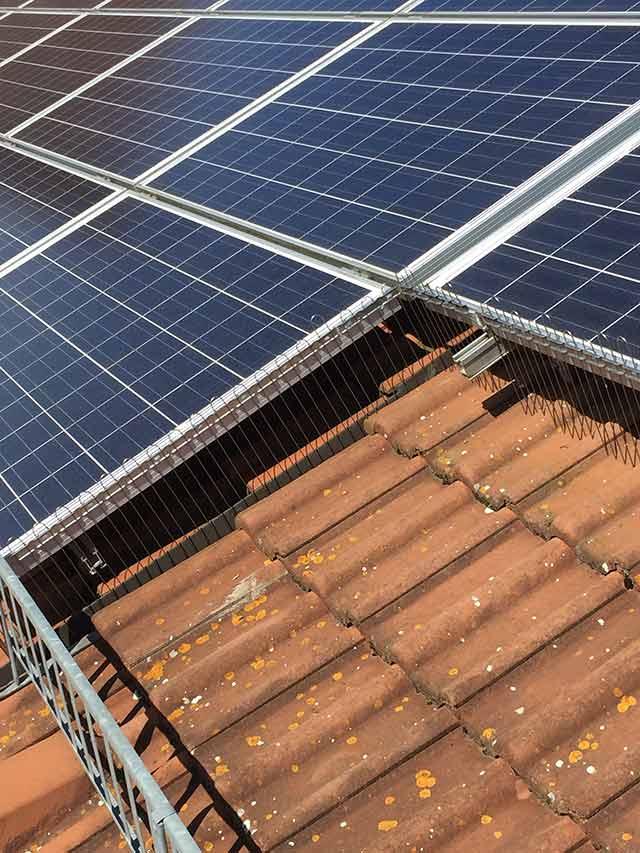 Taubenabwehrzaun an Solarmodulen